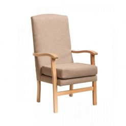 Lounge Chair in scratch resistant – Faux Leather