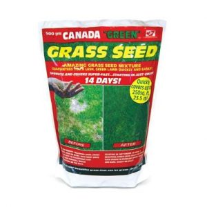 Canada Green Grass Seed 500g 23 Square Metres Coverage