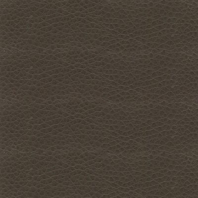 Care & LeisureManhattan Plains Brown